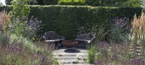garden design and planting based in Brighton