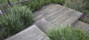 hardwood-deck-design-and-build-brighton