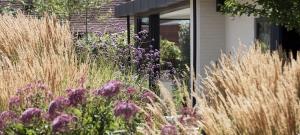 large-glass-kitchen-extension-garden-design