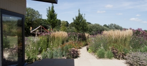 large-planting-of-perennials-and-grasses-mike-harvey-gardens