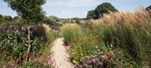 path-connects-garden-with-wider-landscape