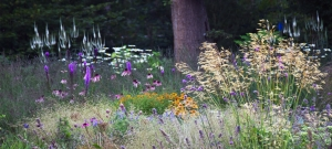 perennial-planting-design-sussex