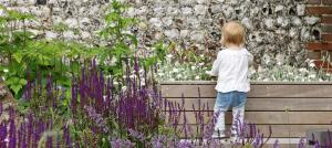 planting-in-front-of-flint-wall-sussex